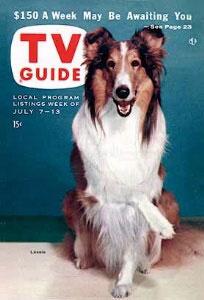 lassie31.jpg