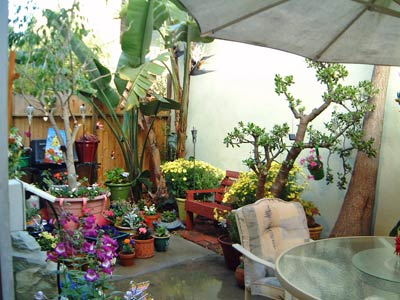 patio008.jpg