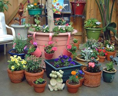 patio015.jpg