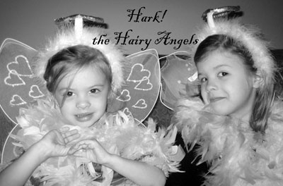 hairy-angels.jpg