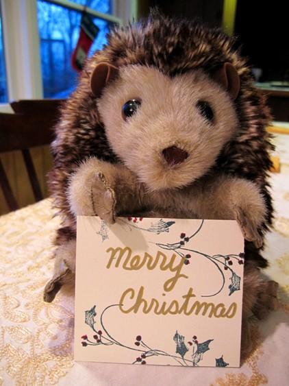 Merry Hedgehog