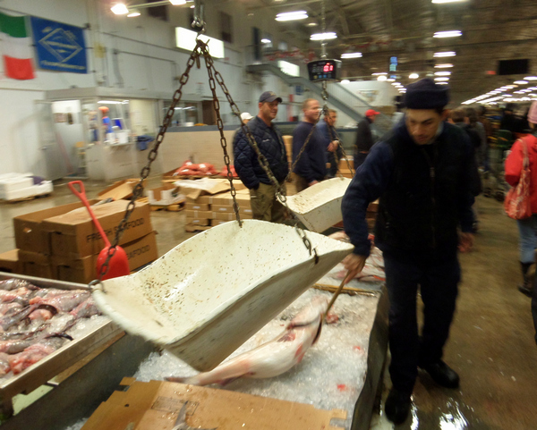 New york city page 3 citizen of the month for New fulton fish market